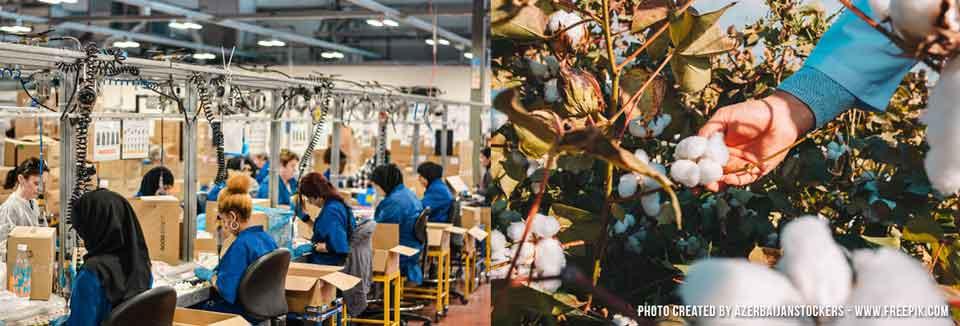 Textilfabrik in Asien und Baumwollernte